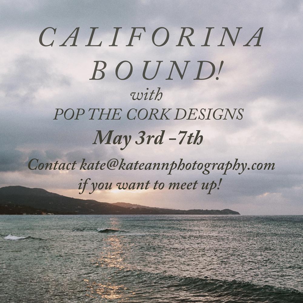 California photographer kate ann photography road trip big sur LA