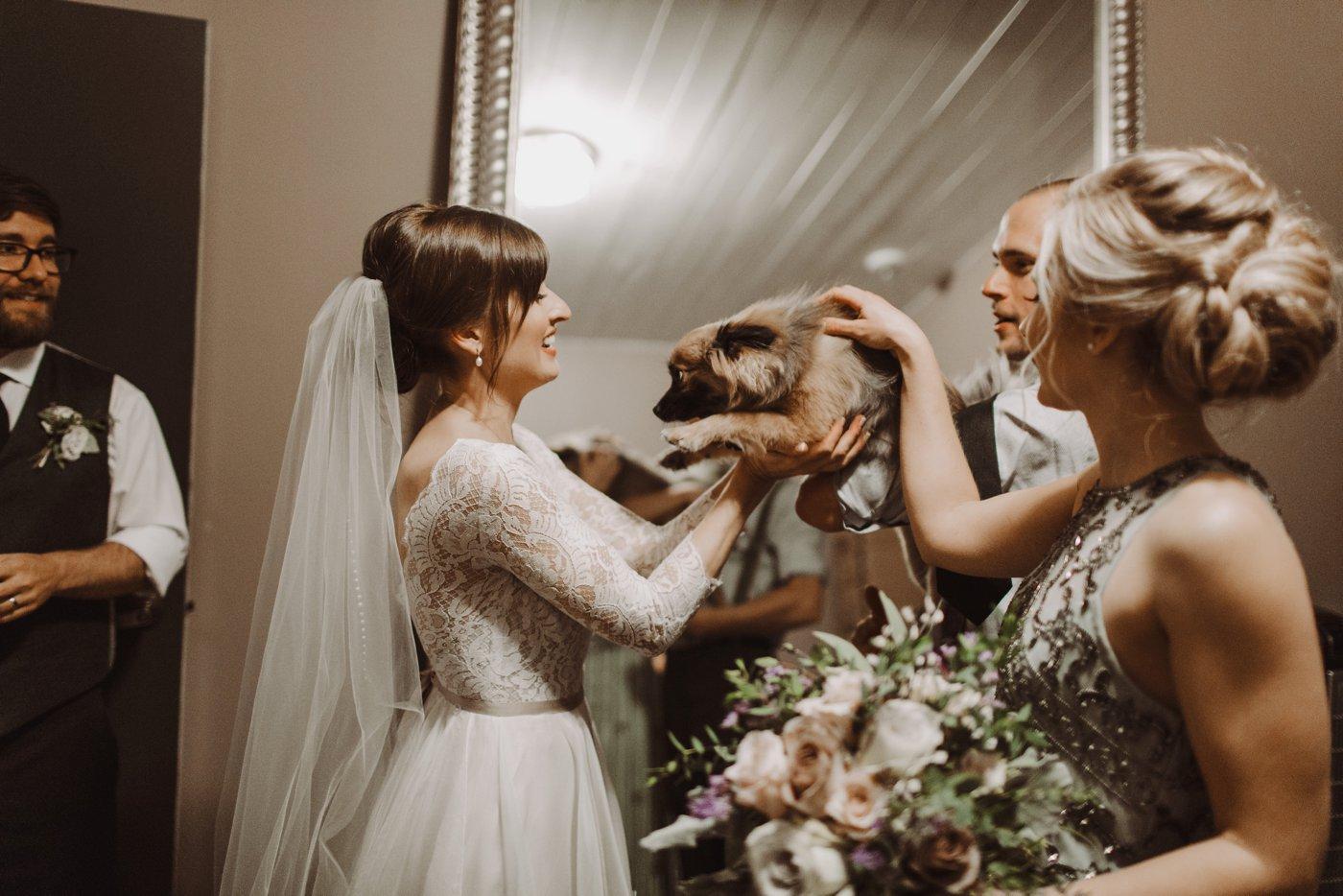 bride and dog Mt. Washington Mill Dye House Baltimore wedding photographer