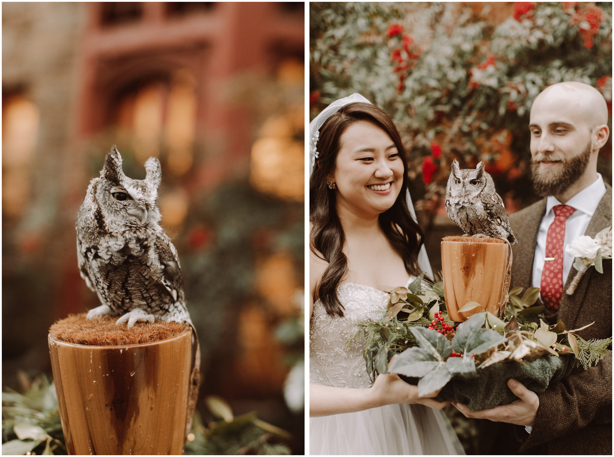 Harry Potter Themed Wedding Live Owl